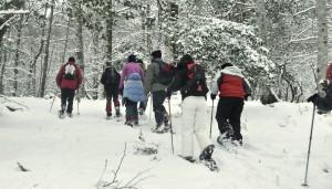 Con raquetas sobre nieve. Bosques de Cantabria, 10:00 a.m